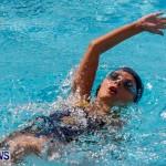 Sharks Sprint Swim Meet Bermuda, October 19, 2013-26