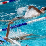 Sharks Sprint Swim Meet Bermuda, October 19, 2013-30