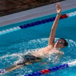 Sharks Sprint Swim Meet Bermuda, October 19, 2013-31