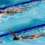 Sharks Sprint Swim Meet Bermuda, October 19, 2013-32