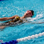 Sharks Sprint Swim Meet Bermuda, October 19, 2013-33