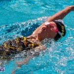 Sharks Sprint Swim Meet Bermuda, October 19, 2013-34