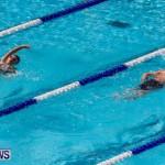 Sharks Sprint Swim Meet Bermuda, October 19, 2013-35