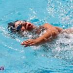 Sharks Sprint Swim Meet Bermuda, October 19, 2013-40