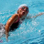 Sharks Sprint Swim Meet Bermuda, October 19, 2013-41