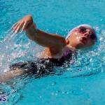 Sharks Sprint Swim Meet Bermuda, October 19, 2013-44