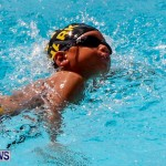Sharks Sprint Swim Meet Bermuda, October 19, 2013-45
