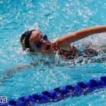 Sharks Sprint Swim Meet Bermuda, October 19, 2013-51