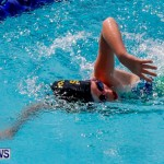 Sharks Sprint Swim Meet Bermuda, October 19, 2013-56
