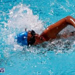 Sharks Sprint Swim Meet Bermuda, October 19, 2013-57