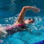 Sharks Sprint Swim Meet Bermuda, October 19, 2013-60