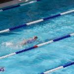 Sharks Sprint Swim Meet Bermuda, October 19, 2013-61