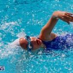 Sharks Sprint Swim Meet Bermuda, October 19, 2013-64