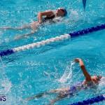 Sharks Sprint Swim Meet Bermuda, October 19, 2013-68
