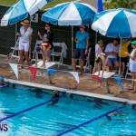 Sharks Sprint Swim Meet Bermuda, October 19, 2013-8