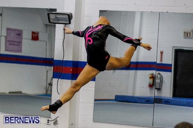 Bermuda Gymnastics, November 16 2013-1