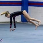 Bermuda Gymnastics, November 16 2013-10