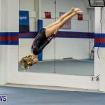 Bermuda Gymnastics, November 16 2013-11
