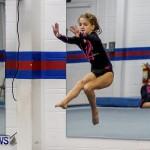 Bermuda Gymnastics, November 16 2013-13