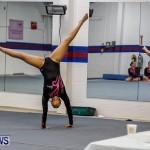 Bermuda Gymnastics, November 16 2013-15