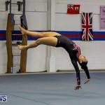 Bermuda Gymnastics, November 16 2013-16