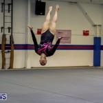 Bermuda Gymnastics, November 16 2013-20