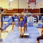 Bermuda Gymnastics, November 16 2013-22