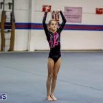Bermuda Gymnastics, November 16 2013-3