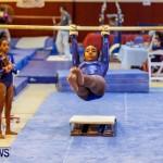 Bermuda Gymnastics, November 16 2013-36