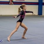 Bermuda Gymnastics, November 16 2013-4
