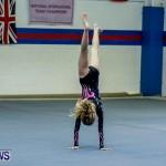 Bermuda Gymnastics, November 16 2013-6