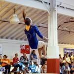 Bermuda Gymnastics, November 16 2013-63