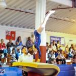 Bermuda Gymnastics, November 16 2013-64