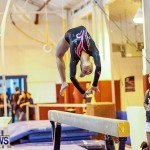 Bermuda Gymnastics, November 16 2013-70