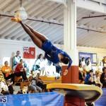 Bermuda Gymnastics, November 16 2013-80
