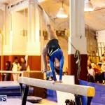 Bermuda Gymnastics, November 16 2013-84