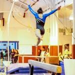 Bermuda Gymnastics, November 16 2013-87