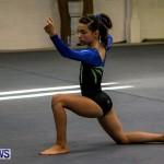 Bermuda Gymnastics, November 16 2013-88