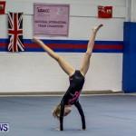 Bermuda Gymnastics, November 16 2013-9