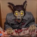 Bermuda Halloween, October 31 2013-5