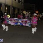 2013 santa parade bermuda (15)