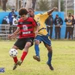 Boxing Day Football Bermuda, December 26 2013-1