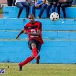 Boxing Day Football Bermuda, December 26 2013-13