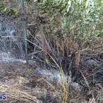 St Davids Brush Fire Bermuda, December 10 2013-10