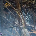 St Davids Brush Fire Bermuda, December 10 2013-13