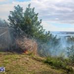 St Davids Brush Fire Bermuda, December 10 2013