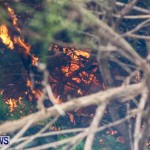 St Davids Brush Fire Bermuda, December 10 2013-18