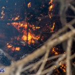 St Davids Brush Fire Bermuda, December 10 2013-20