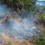 St Davids Brush Fire Bermuda, December 10 2013-7