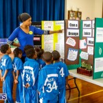 Elliot Primary School Science Fair Bermuda, Feb 26 2014-1